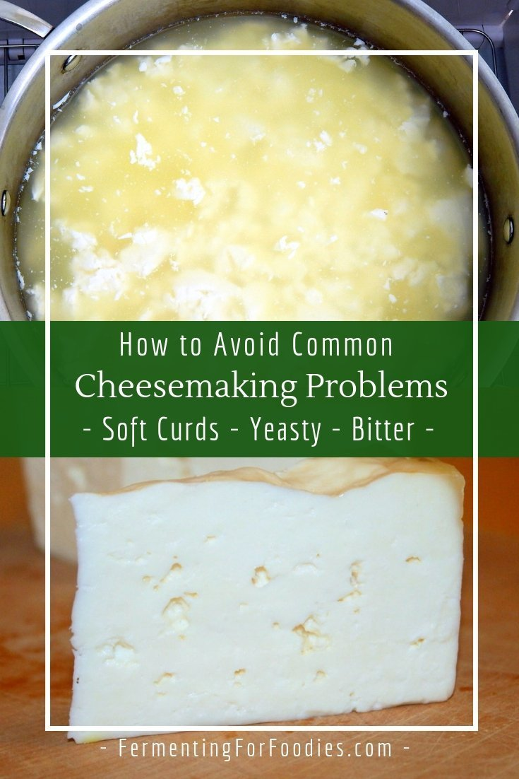 Common cheesemaking problems - how to prevent soft curds, crumbly curds, bitter cheese, yeast and mold.