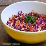 Honey garlic probiotic coleslaw. A unique and delicious salad.