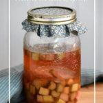 How to make sweet fermented rhubarb using yeast-based beverages like kombucha, ginger bug or apple cider vinegar