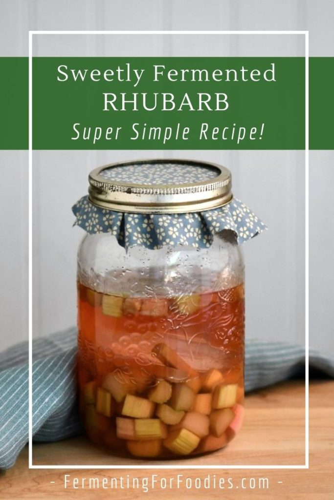 Simple, zero-waste, no cook fermented rhubarb. An easy recipe, perfect for beginners!