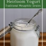 Learn about the difference between heirloom yogurt and store-bought yogurt