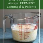 Simple fermented cornmeal and polenta for improved nutritional value and digestion