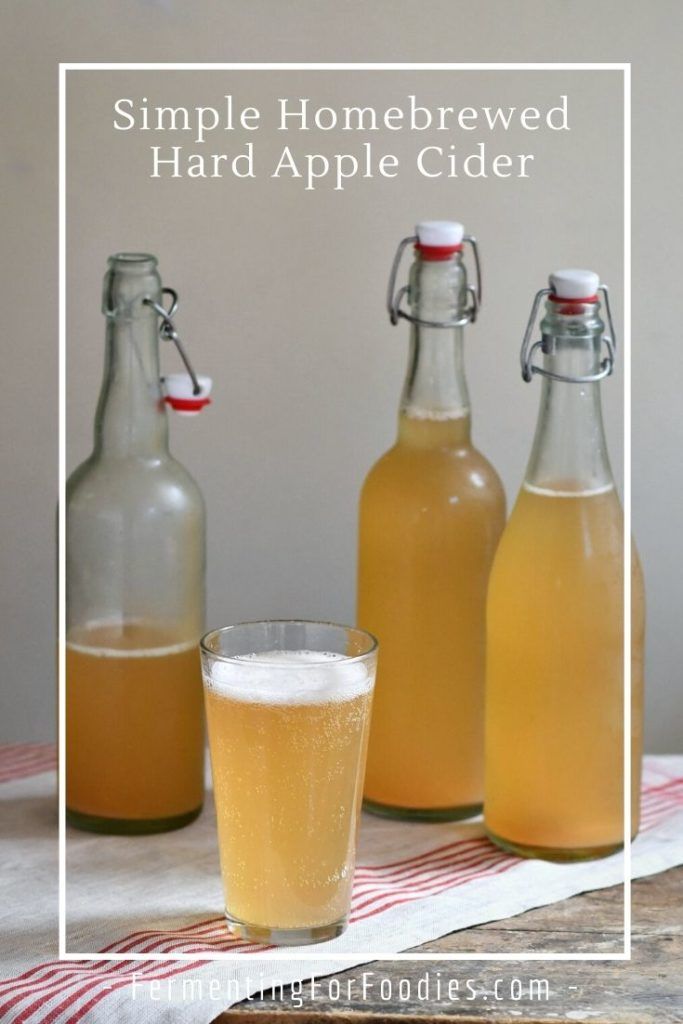Brewing your own hard cider is easier than you think, with this juice-based recipe