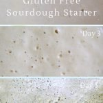 Simple-gluten-free-sourdough-starter-for-amazing-bread-and-baking