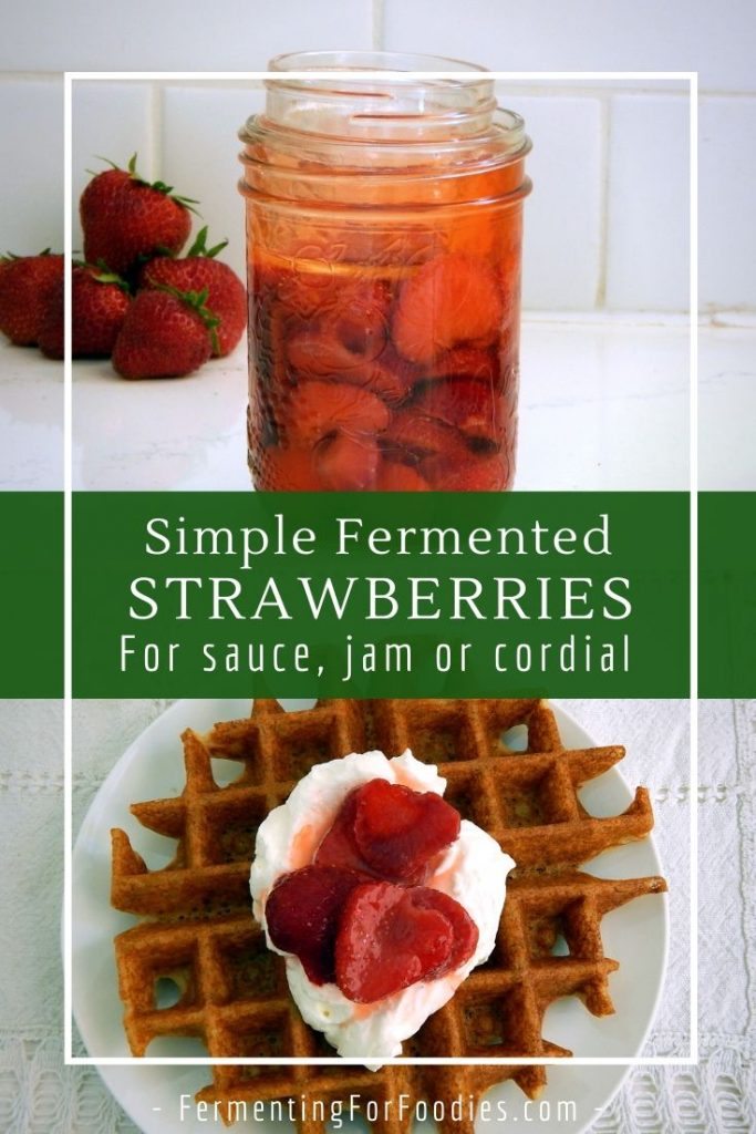 How to make fermented strawberries with honey, kombucha, ginger bug or water kefir
