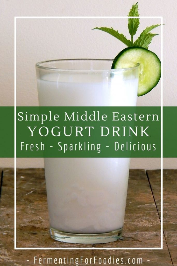 Simple Middle Eastern yogurt drink - Doogh, Ayran, Tan
