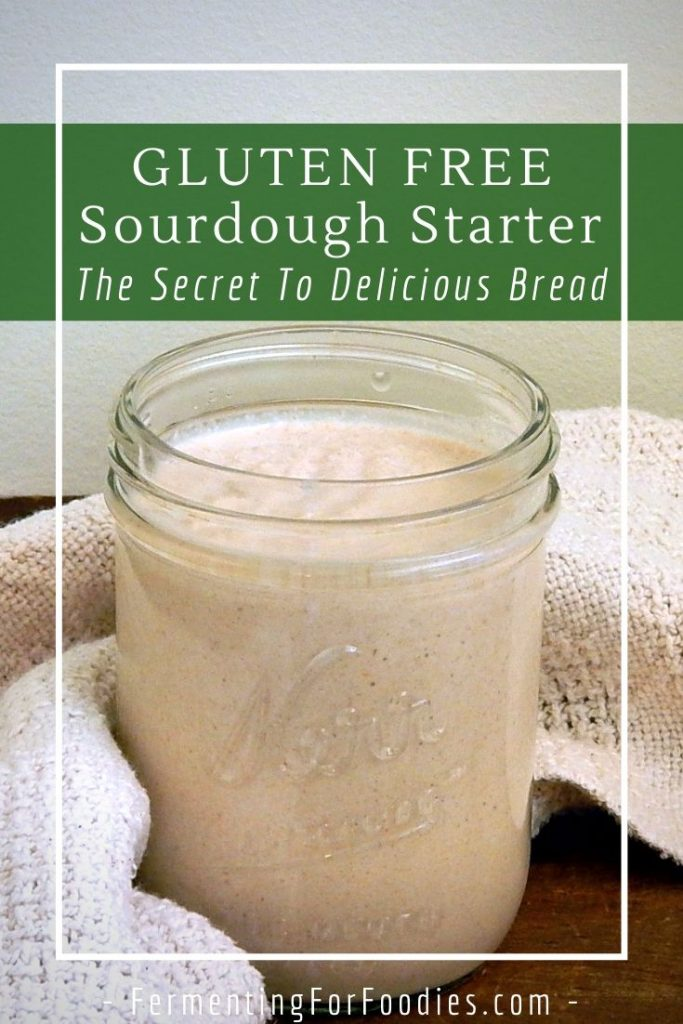 How-to-make-a-gluten-free-sourdough-starter-in-less-than-5-days