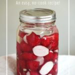 Homemade fermented radishes for a probiotic snack or condiment.