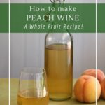 Homemade peach wine with whole fruit