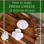 Homemade fresh cheese, 10 simple recipes, perfect for beginners
