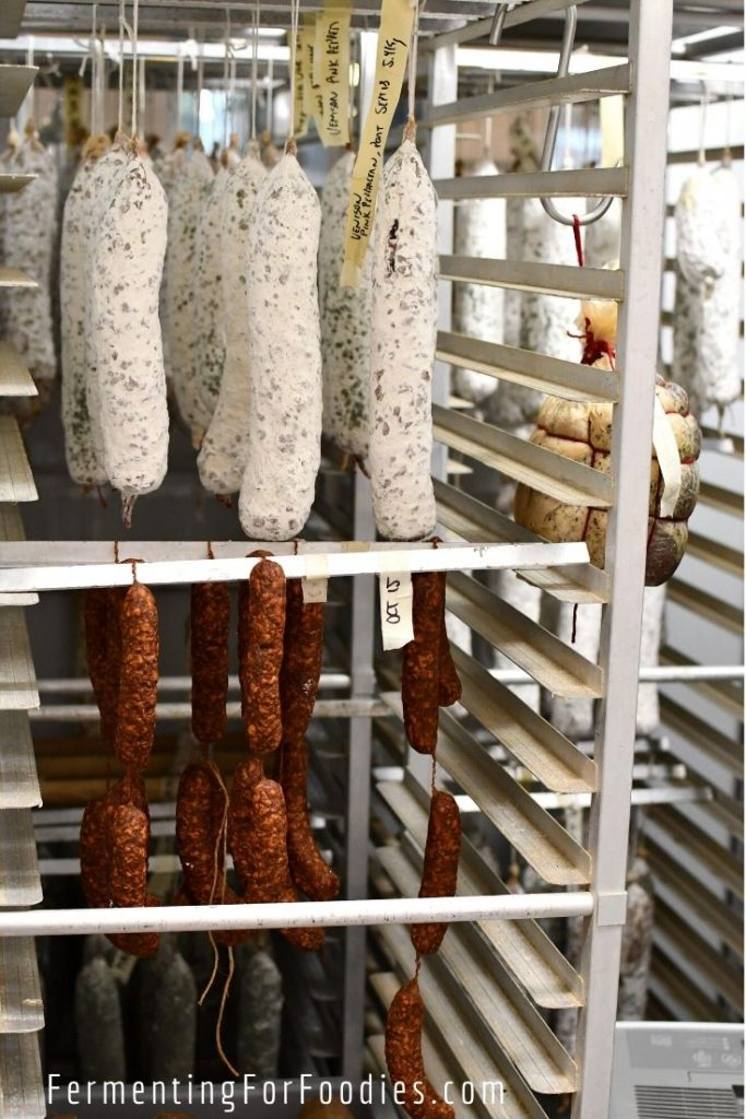 Agrius fermented vegetables, meats, kombucha, koji, miso and more