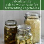 How to calculate salt to water ratios for the best fermentation brine