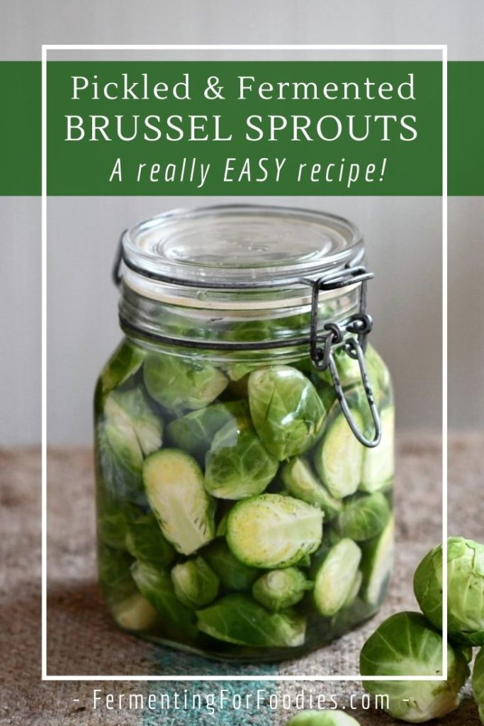 Fermented Brussel sprouts are surprisingly delicious!