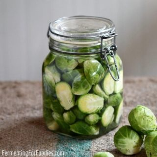 How to make fermented Brussel sprouts with 5 delicious flavours including pickling spice, chili and garlic