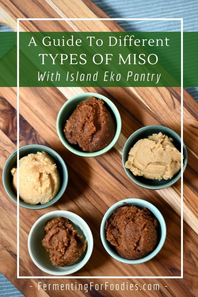 Why are there so many types of miso and how to know which one to choose