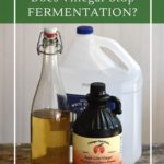 Does vinegar stop fermentation and three reason why you might want to add vinegar to fermented vegetables.